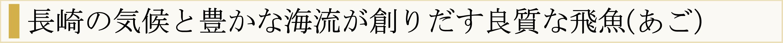長崎の気候と豊かな海流が生み出す新鮮な飛魚(あご)